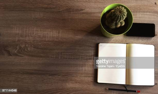 High Angel View Of Book By Potted Plant On Table