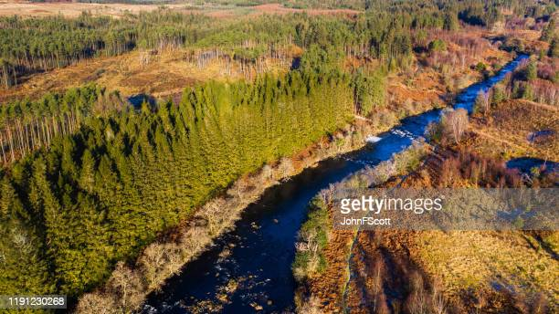 high angle aerial view of a river running through an area of forest in a remote location of rural dumfries and galloway - johnfscott stock pictures, royalty-free photos & images