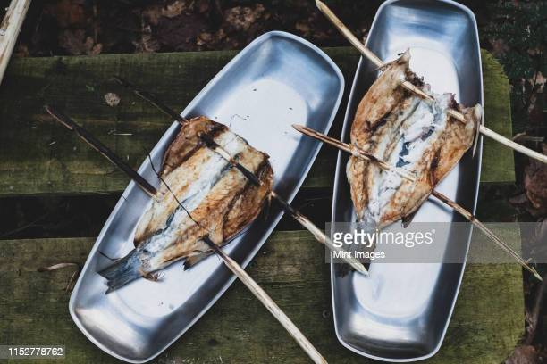 high angle close up of grilled fish on wooden skewers on metal plates, cooking outdoors - woodland stock pictures, royalty-free photos & images