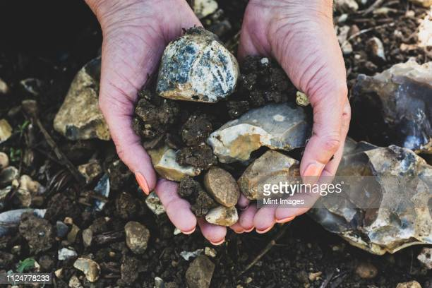 high angle close up of hands holding bunch of pebbles and soil at a vineyard, with flints and light draining soil. - terra imagens e fotografias de stock