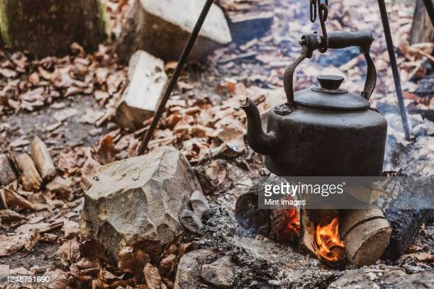high angle close up of kettle over camp fire in a forest. - woodland stock pictures, royalty-free photos & images