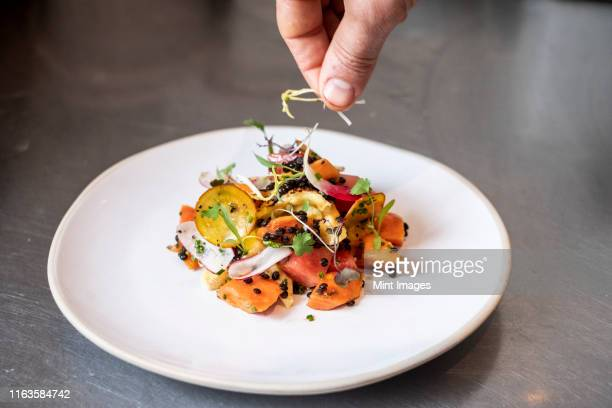 high angle close up of person garnishing plate of salad with some herbs. - plate stock pictures, royalty-free photos & images