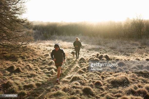 high angle front view of mother, son and dog running on grassland - bush dog stock pictures, royalty-free photos & images