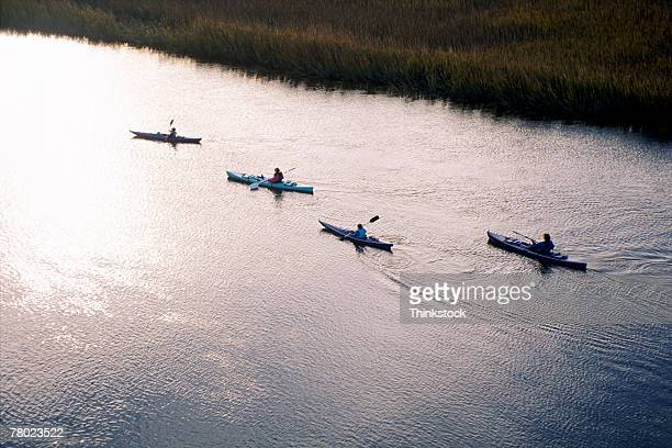 High angle of four kayakers going along a waterway surrounded by marsh.