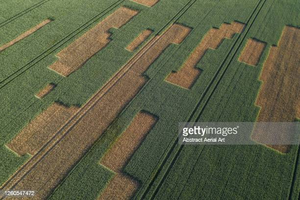 high angle perspective showing strange patterns in a field, england, united kingdom - mode of transport stock pictures, royalty-free photos & images