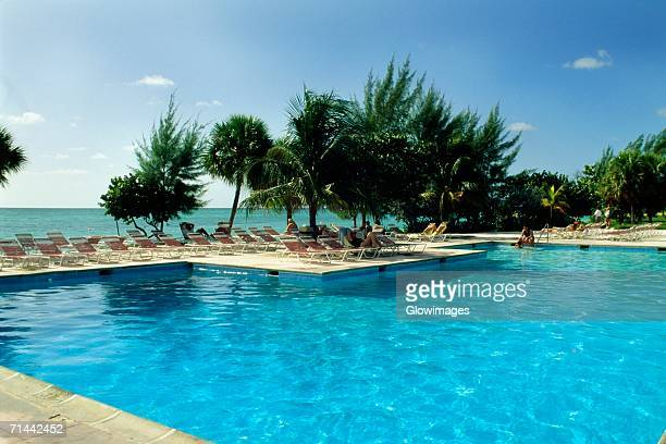 high angle view of a clear swimming pool at lucayan beach resort, freeport, bahamas - grand bahama stock photos and pictures