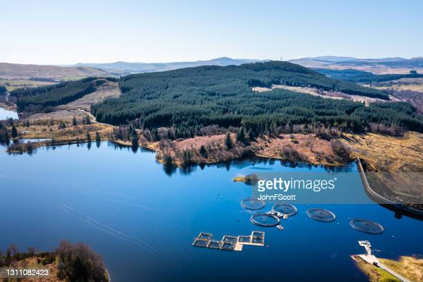 high angle view of a fish farm on a scottish loch - johnfscott stock pictures, royalty-free photos & images