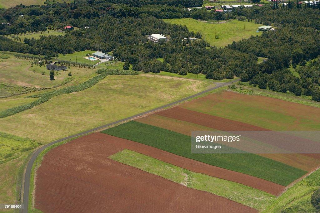 High angle view of a landscape, Hilo, Big Island, Hawaii Islands, USA : Foto de stock