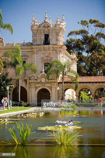 High angle view of a lily Pond reflecting pool, Balboa Park, San Diego, California, USA
