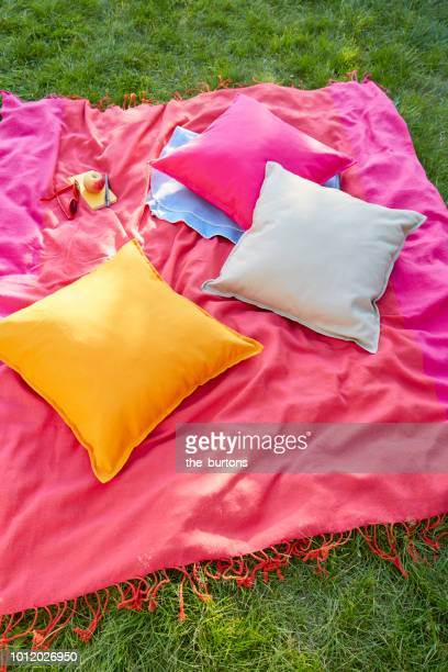 High angle view of a picnic blanket and colorful pillows on meadow