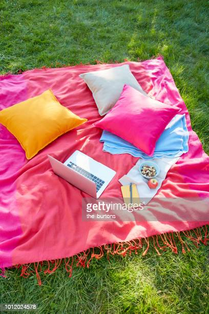 High angle view of a picnic blanket with laptop and colorful pillows on meadow