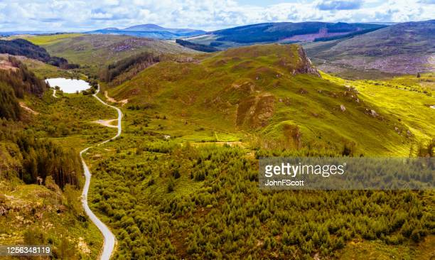 high angle view of a small scottish loch in valley in rural south west scotland - forest stock pictures, royalty-free photos & images