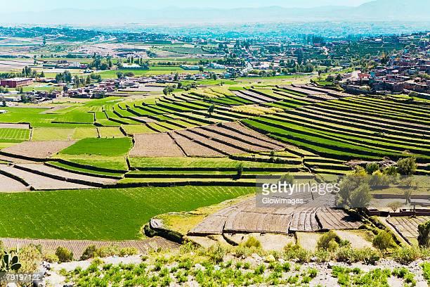 high angle view of a terraced field, sabandia, arequipa, peru - terrassenfeld stock-fotos und bilder