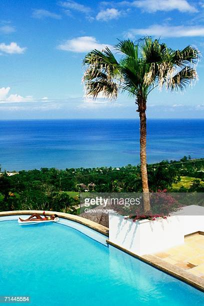 high angle view of a woman relaxing in a swimming pool, endless summer villa, montego bay, jamaica. - montego bay stock pictures, royalty-free photos & images