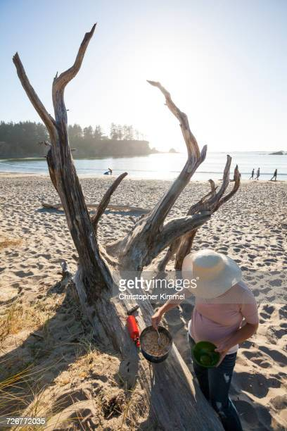high angle view of a young woman cooking pasta dinner while camping on the beach - sunset bay state park stock pictures, royalty-free photos & images