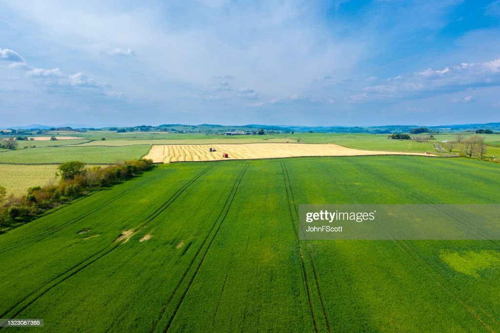 High angle view of agriculatural land in Scotland : Stock Photo
