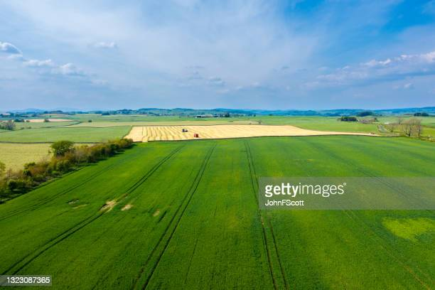 high angle view of agriculatural land in scotland - johnfscott stock pictures, royalty-free photos & images
