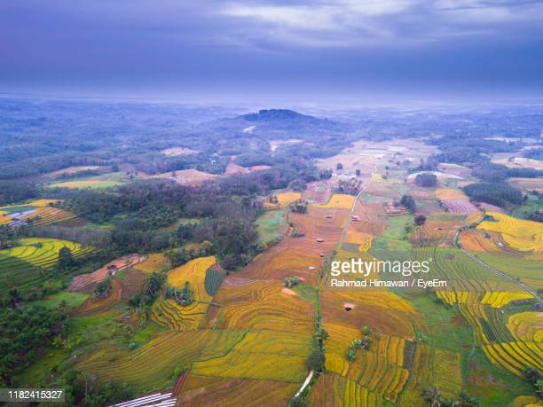 high angle view of agricultural field against sky - rahmad himawan stock photos and pictures