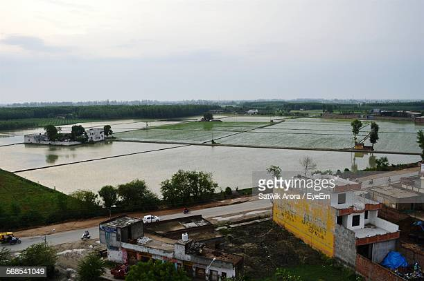high angle view of agricultural field against sky - punjab india stock pictures, royalty-free photos & images