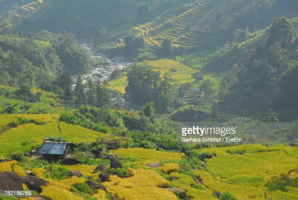 high angle view of agricultural field and houses - gerhard schimpf stock pictures, royalty-free photos & images