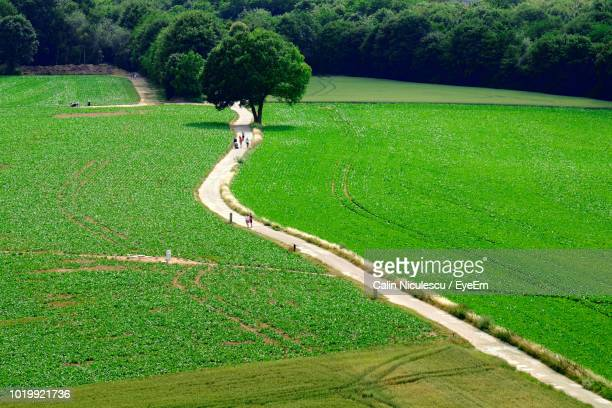 high angle view of agricultural field - waterloo belgium stock pictures, royalty-free photos & images