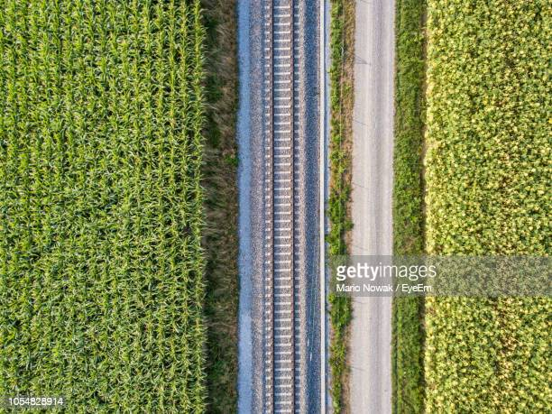 high angle view of agricultural field - parallel stock pictures, royalty-free photos & images