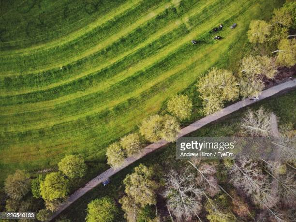 high angle view of agricultural field - northampton stock pictures, royalty-free photos & images