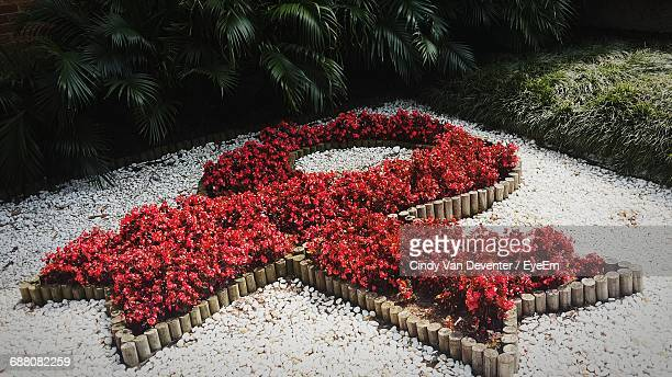 High Angle View Of Aids Awareness Ribbon Made From Flowers At Park