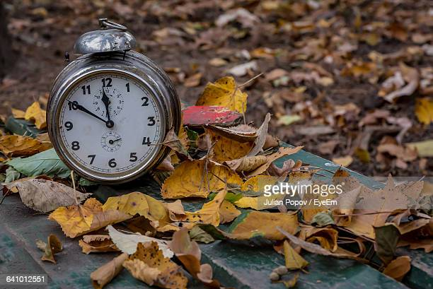 High Angle View Of Alarm Clock On Bench With Dry Leaves During Autumn