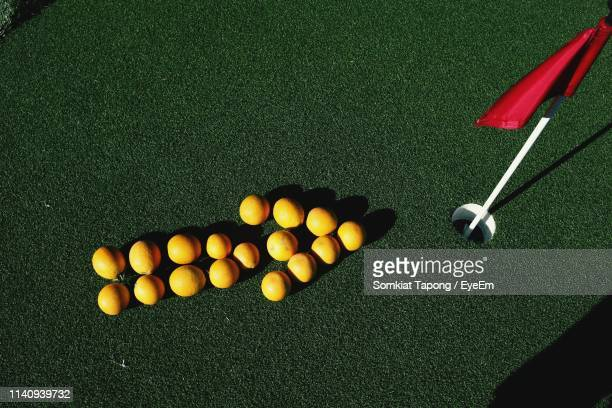 high angle view of arrow symbol made with citrus fruits on golf course - golf flag stock pictures, royalty-free photos & images