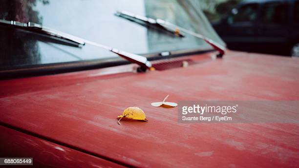 High Angle View Of Autumn Leaves On Vintage Car