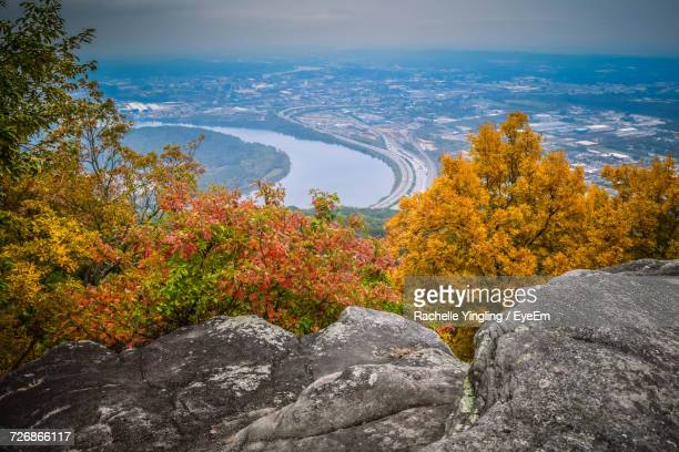 High Angle View Of Autumn Trees Against Landscape Seen From Cliff