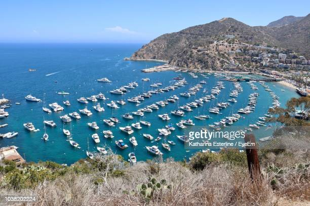 high angle view of beach against sky - catalina island stock photos and pictures