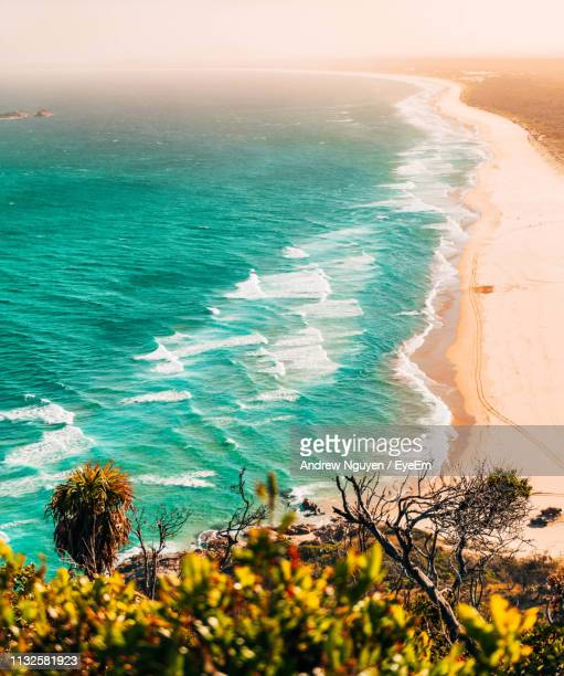 high angle view of beach - port macquarie stock pictures, royalty-free photos & images