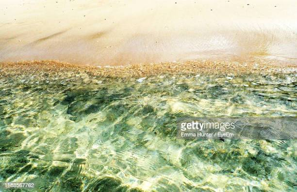 high angle view of beach - emma hunter eye em stock photos and pictures