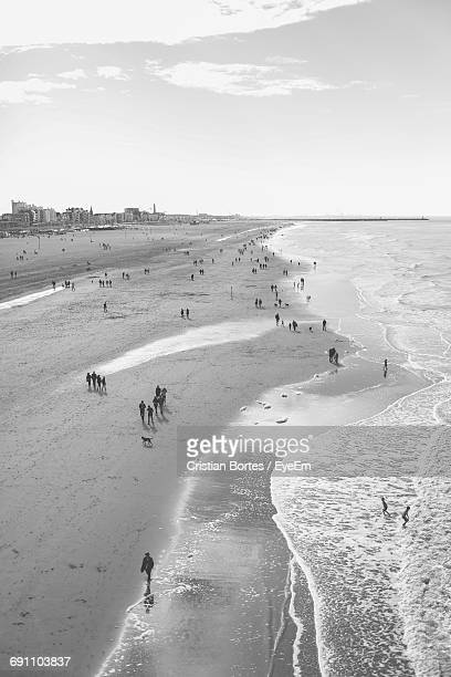 high angle view of beach - bortes stock photos and pictures