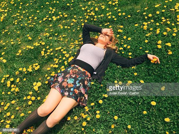 high angle view of beautiful woman resting on field surrounded by yellow flowers - umgeben stock-fotos und bilder
