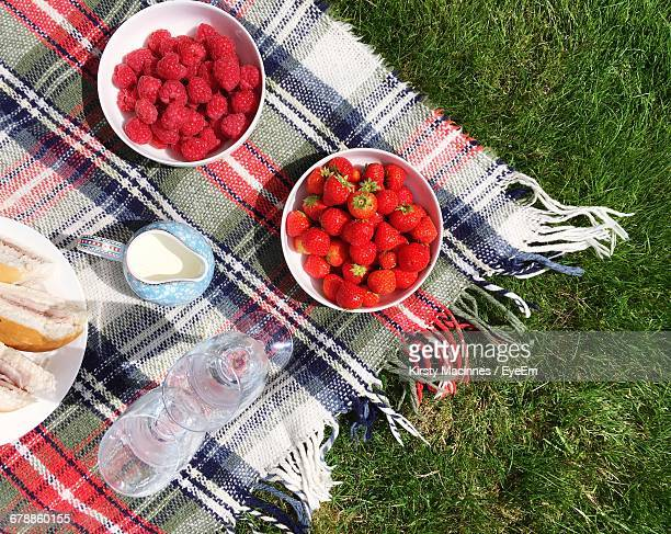 High Angle View Of Berries In Containers On Picnic Blanket At Field