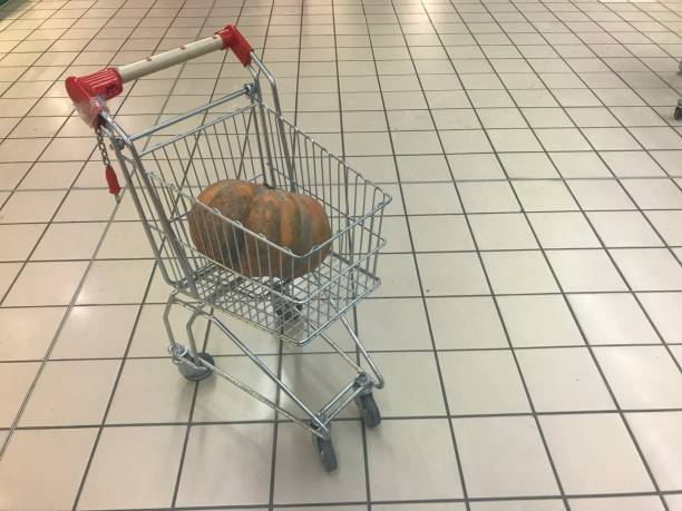 High Angle View Of Bird In Basket On Floor