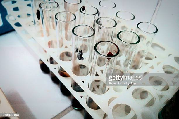 High Angle View Of Blood Samples In Test Tubes