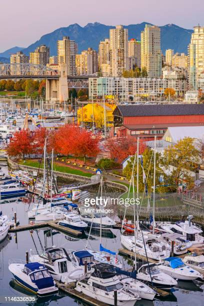 high angle view of boats docked in vancouver harbor, british columbia, canada - vancouver stock pictures, royalty-free photos & images
