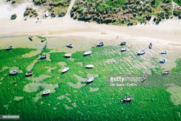 high angle view of boats in sea - albufeira stock pictures, royalty-free photos & images