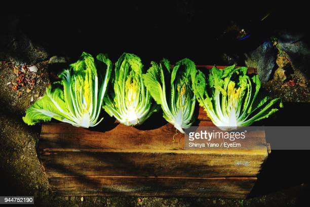 High Angle View Of Bok Choy On Wooden Table
