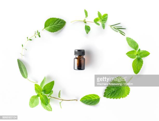 high angle view of bottle with herbs arranged on white background - mint leaf stock photos and pictures
