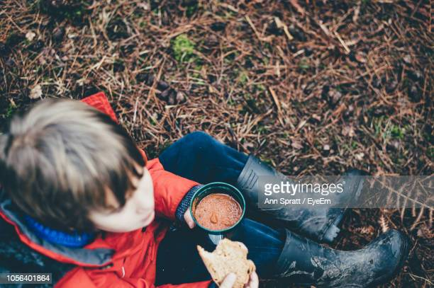 High Angle View Of Boy Eating Food While Sitting On Field