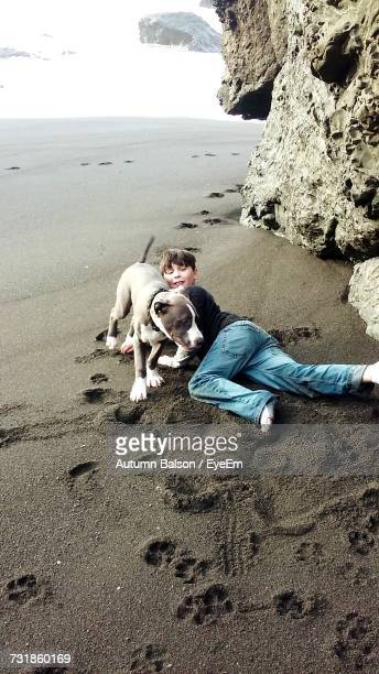 High Angle View Of Boy Playing With Dog On Sand At Beach