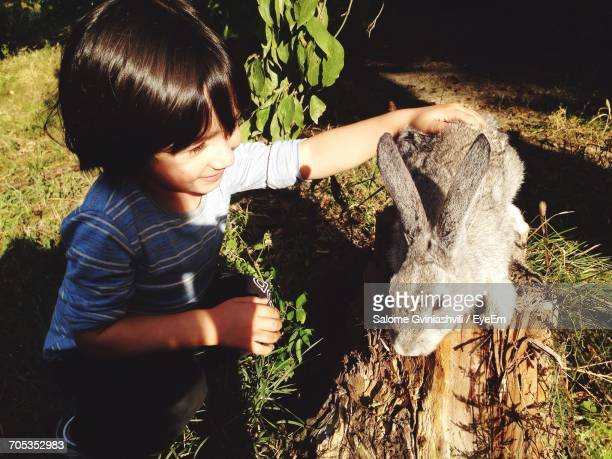 High Angle View Of Boy Stroking Rabbit On Wood