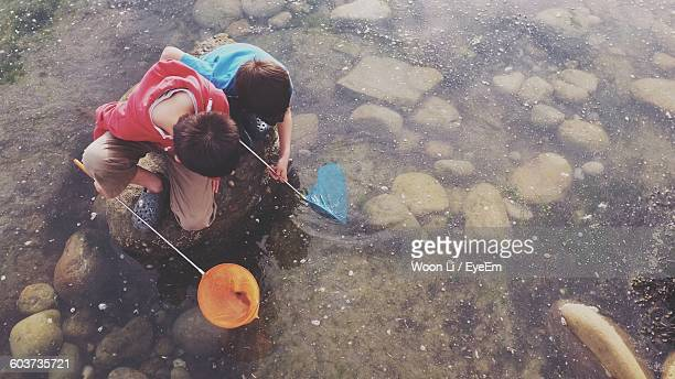 High Angle View Of Boys Fishing On Lake With Net
