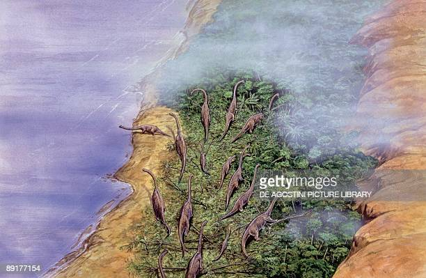High angle view of brachiosaurus dinosaurs at the coast