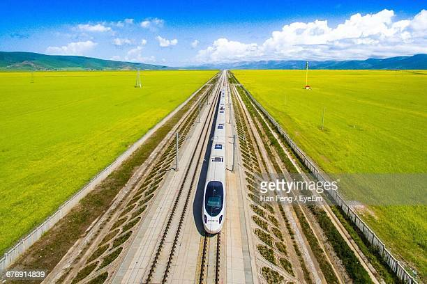 High Angle View Of Bullet Train Amidst Flower Field